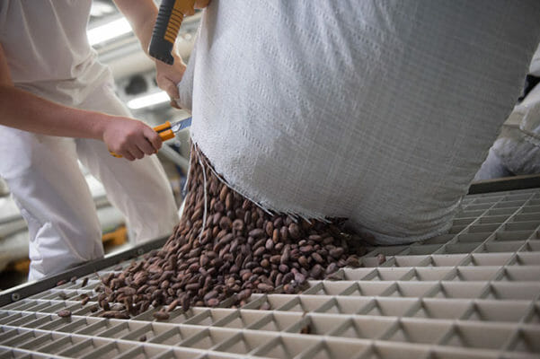 The bean to bar process starts after the quality check.