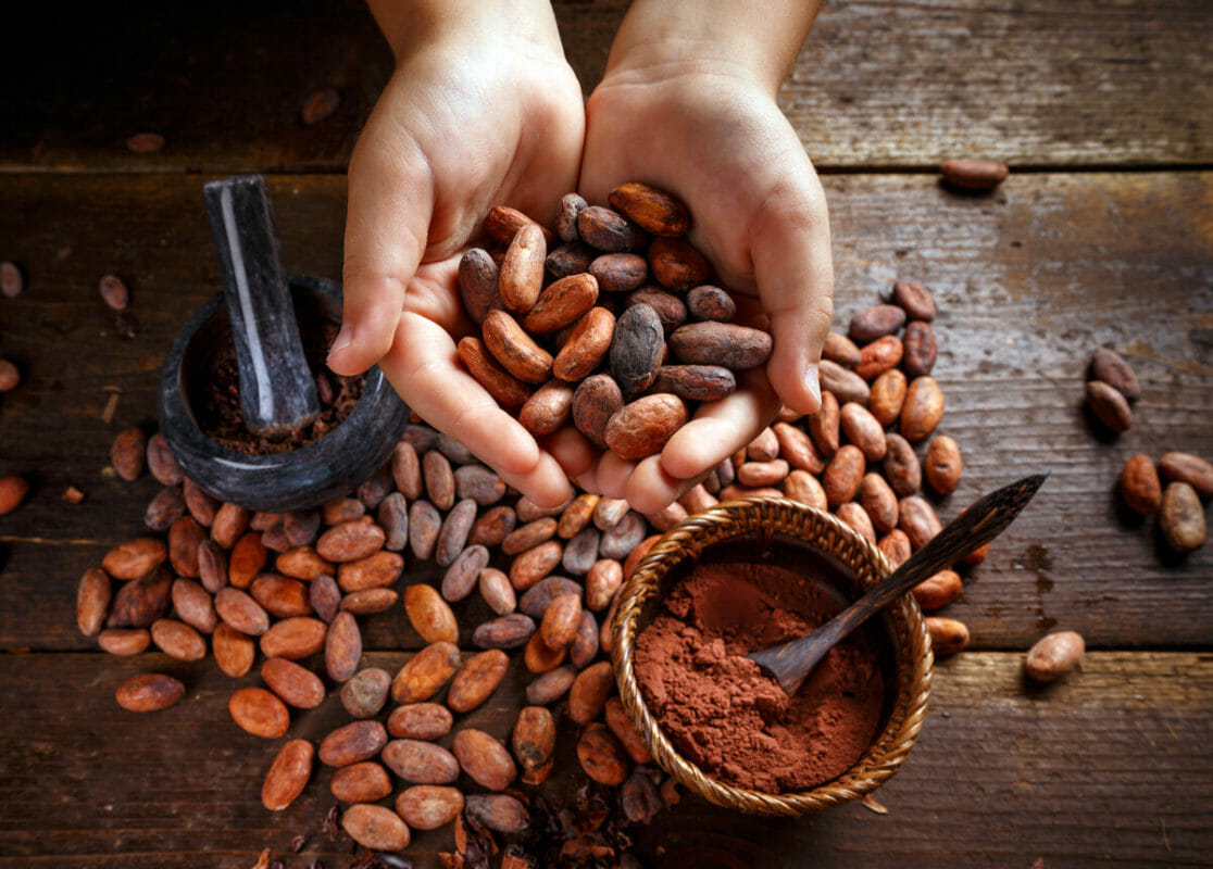 Cocoa beans for bean-to-bar process